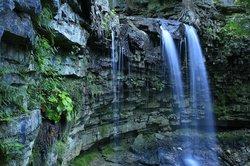 Hilton Falls Conservation Area
