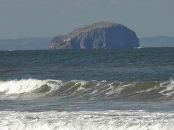 Bass Rock from Belhaven Beach