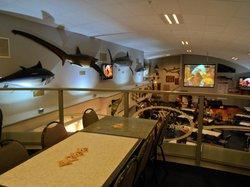 Skipper's Restaurant
