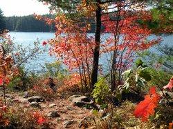High Falls Trail ~ Algonquin Park