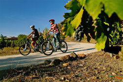 Gratallops Wine Tour