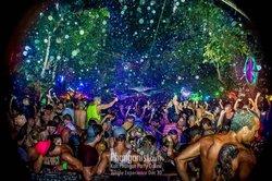 Jungle Experience Koh Phangan