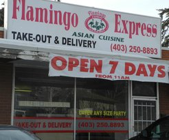 ‪Flamingo Express‬