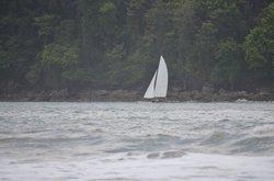 Surfnsail