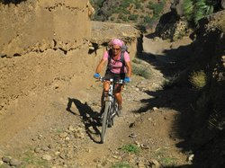Bike Adventures in Morocco - Private Day Tours