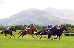 Killarney Racecourse