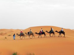 Desert Destinations - Day Tours