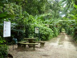 Peperpot Nature Park