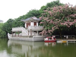 金花茶公园