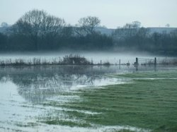 Somerset Levels and Moors Wetland