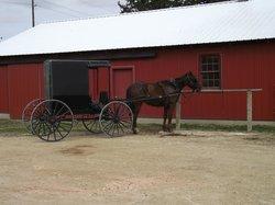 R & M Amish Tours