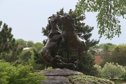 Fighting Stallions Memorial