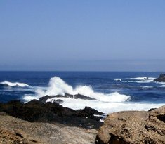 Ophir Beach