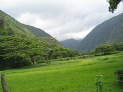 Waipio Valley Shuttle