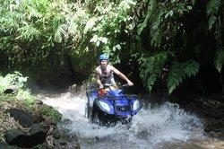 Bali Taro Adventure