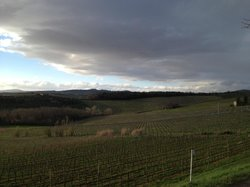 Weingut San Felice