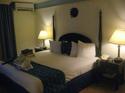Basic Bay/Mountain View Room