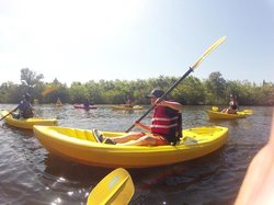Island Time Kayaking Tours & Hire