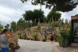 Jardín Botánico Cactus d'Algar