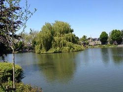 Blessington Basin