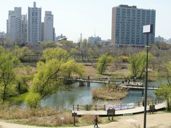 Yeouido Saetgang Ecological Park