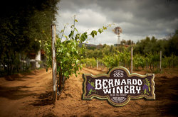 Bernardo Winery