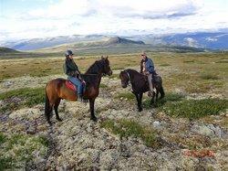 Øien Øvre Hesteaktiviteter - Day Tours