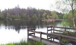 The Lochan Trail