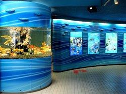 Saitama Aquarium