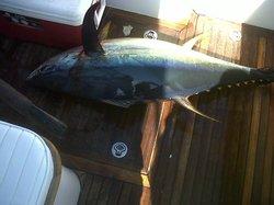 Wahoo Loco Sport Fishing