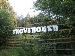 Skovsnogen Artspace