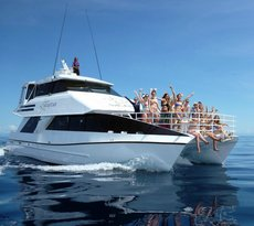 Seastar Cruises Reef Day Trips