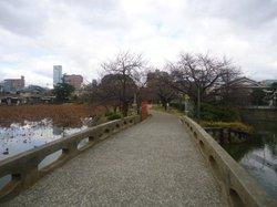 Momogaike Park