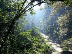 Forest Park Conservation Area Tahura Ir. H. Juanda