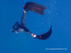 Singapore Freedivers