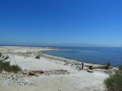 Salton Sea Shores
