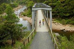 Hauraki Rail Trail