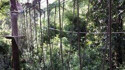 Sky Garden Parque de Arborismo