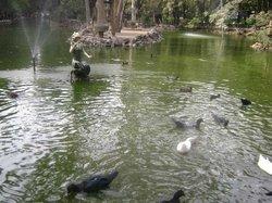 Zoológico León