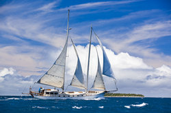Wayward Wind Charters Fiji