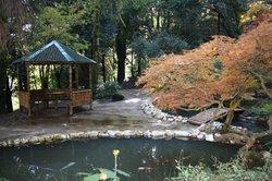 Batumi Botanical Gardens