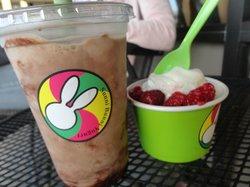 SunniBunni Yogurt & Smoothie Shop