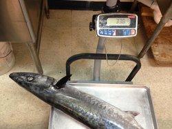 Bahia Honda Fish Market & Restaurant