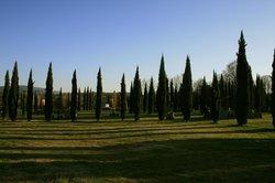 Parco d'arte Pazzagli
