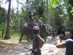 Bali Culture Tour - Private Tours