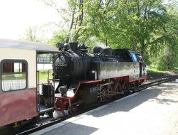 The Mollie Steam Train