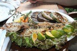 Whole Sea Bass (Corvina) w/ Egg Plant