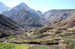 Treks All Morocco - Private Day Tours