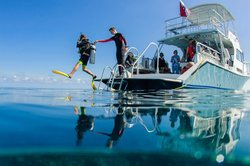 Blue Water Divers & Watersports Ltd