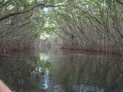 Laguna La Redonda